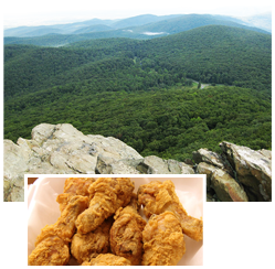Hiking and Gourmet Food in Charlottesville Virginia