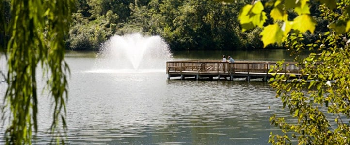 Lakeside Apartments for rent in Charlottesville