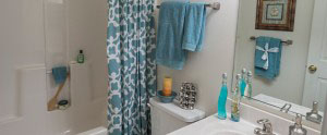 Apartments for rent in Charlottesville Virginia Bathroom
