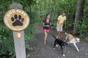 Dog Walking Trails near your Charlottesville Apartment