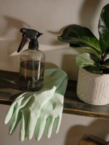 Tips to Make Your Charlottesville Apartment Clean and Fresh