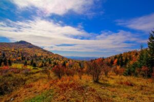 Breathtaking Fall Beauty in Virginia