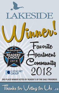 Lakeside Winner of Readers' Choice 2018 Award (3rd place)
